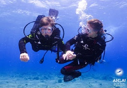 scuba diving holidays with kids